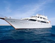 Kite & dive safari Red Sea 2.0